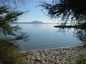lake-rotorua,cr- rotorua-travel-secrets.com