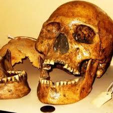 SI-TE- CAH skulls, cr-stormfront.org