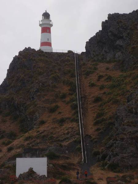 Cape Palliser Lighthouse Credit: J McLellan