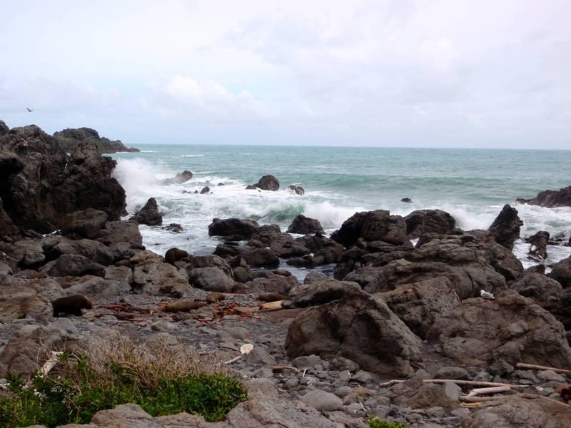 The rugged coastline Credit: J McLellan