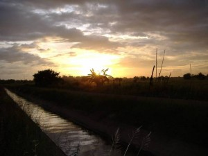 Sunset over a Thai Rice Paddy Field Credit: Stephen Shrubsall