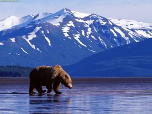 Alaska, Cr-Origonsunshine