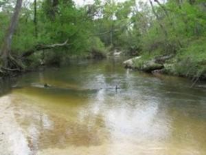 Folsum, Louisiana