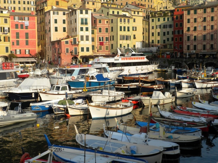 fishing village  at Camogli, near Genoa