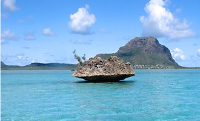 Gorgeous Mauritius Cr: boatbookings.com