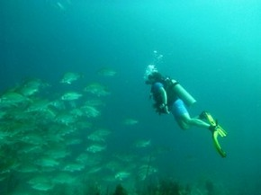Belize-City-Scuba-Diving-Dive-in-Belize