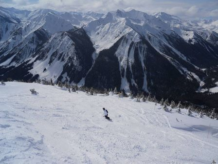 Kicking Horse - Michelle Barrow