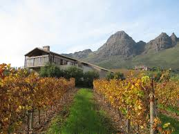 Uva Mira Winery with Helderberg mountains in the background