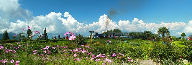 Batista loop,Darjeeling, Cr-Wikipedia