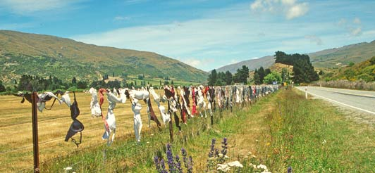 "The ""knicker fence"" near Wanaka was a popular attraction until the local council declared it a traffic hazard."
