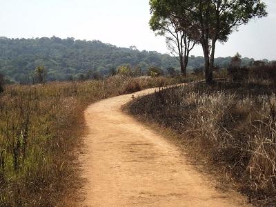 Nong Pak Chee Nature Trail