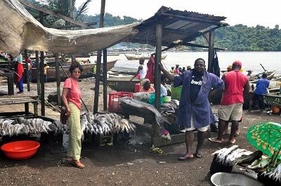 Fresh fish in Cameroon